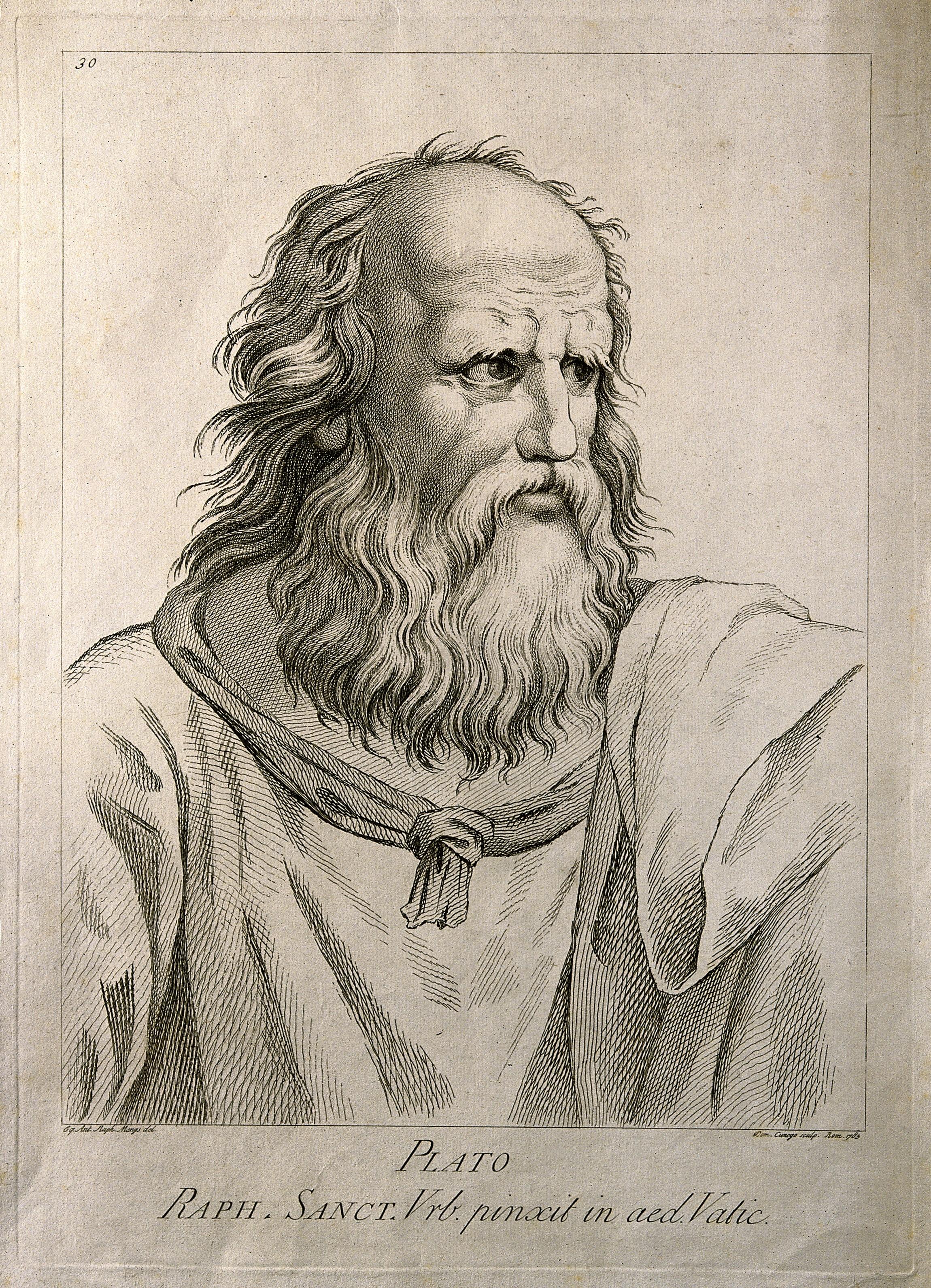 Wut macht politisch - Platon - Etching by D. Cunego